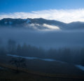 Foggy morning in the alps Stock Images