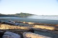 Foggy morning, blue sky, Cox Bay, Tofino, British Columbia, Canada Royalty Free Stock Photo