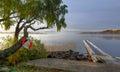 Foggy morning on swedsih lake idyllic landscape of swedish in autumn season Royalty Free Stock Images