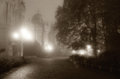 Foggy night in the park Royalty Free Stock Photo