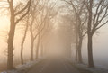 Foggy road Royalty Free Stock Photo