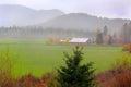 Foggy Valley Farm Royalty Free Stock Photo
