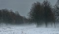 Foggy vista this is foffy in caucasus nature in winter Royalty Free Stock Image