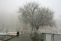Foggy winter morning in the city and pedestrians beautiful photo was taken kiev capital of ukraine europe Stock Photos