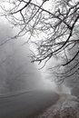 Foggy winter morning cold and road in time Royalty Free Stock Photo