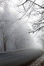Foggy winter morning cold and road in time Stock Image