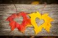 Fogli di autunno con i cuori Immagine Stock