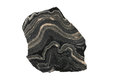 Folded gneiss from the Alps Royalty Free Stock Image