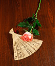 Folding carved sandalwood fan and pink white rose on wooden dark brown background Royalty Free Stock Photos
