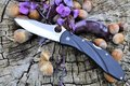 Folding edc knife natural organic nuts violet flowers old wood