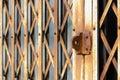 Folding steel doors old vintage style.