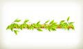 Foliage banner computer illustration on white background Royalty Free Stock Photo