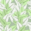 Foliage seamless ornament tropical green Royalty Free Stock Images