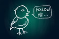 Follow me said a bird social media concept drawn with chalk on blackboard Stock Images