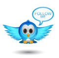 Follow me twitter bird Royalty Free Stock Photo