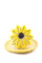Fondo amarillo de sugar cookie on white vertical de la flor Fotos de archivo