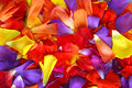 Fondo del pétalo de la flor Fotografía de archivo