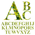 Font made with leaves, floral alphabet letters set, vector desig Royalty Free Stock Photo