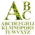 Font made with leaves floral alphabet letters set vector desig design Stock Photo