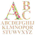 Font made with leaves, floral alphabet letters set Royalty Free Stock Photo
