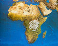 Food for africa rice grains on map Royalty Free Stock Photos