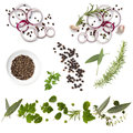 Food Background Collection Onions Herbs Peppercorns Royalty Free Stock Photo