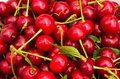 Food background fresh red cherries Stock Photos