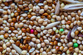 Food for birds. Close up Seeds of cereals. Canary seed. Food for parrots for every day. Abstract background Royalty Free Stock Photo
