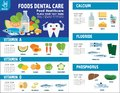 Food health vector infographic elements icon brochure concept