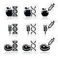 Food dna genetically modyfied food gmo vector icons set of products with syringe on white Stock Image
