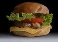 food, fast food, burgers, salads, chicken, steak, cheese, tomato