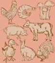 Food flavor icons set: farm animals