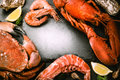 Food frame with crustacean for dinner. Lobster, crab, jumbo shrimps and oysters Royalty Free Stock Photo