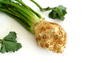 Food head of celery in the foreground on white background Stock Image
