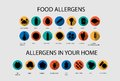 Food and home allergens icons set collection of different kind of in flat style Stock Photo