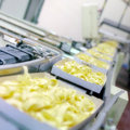 Food industry machine for the production of pasta Royalty Free Stock Photo