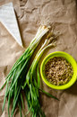 Food ingredients fresh spring onions brie cheese and pearl barley Royalty Free Stock Photos