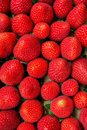 Food Pattern Ripe Organic Summer Strawberries in Cardboard Box at Farmer`s Market Vibrant Colors Royalty Free Stock Photo