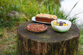 Title: Food for picknick in nature: quiche with tomato, cake and fruits