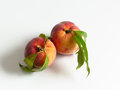 Food two peaches on white background Stock Image