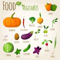 Food vegetables set doodle of pepper pumpkin broccoli onion fennel garlic vector illustration Stock Photo