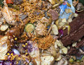 Picture : Food Waste  electronic recycling