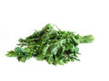Food wilted bunch of parsley on white background Stock Photo