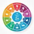 10 foods high in Zinc. Nutrition infographics