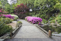 Foot bridge across waterfall pond at crystal springs rhododendron garden in spring season Stock Photography