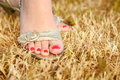 Foot on the dry grass Royalty Free Stock Photos