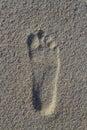 Foot imprint Royalty Free Stock Photo