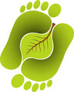 Foot leaf Royalty Free Stock Photos