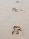 Foot prints on a sandy beach footprint in the sand at in the evening light Stock Photography
