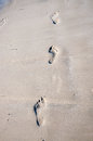 Foot prints on wet sand walking upwards Stock Photography